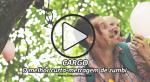 CARGO: O melhor curta-metragem de zumbi